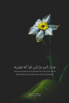 Islamic Art and Quotes Peace Quotes, Faith Quotes, Spiritual Quotes, Beautiful Quran Quotes, Quran Quotes Inspirational, Quran Wallpaper, Islamic Quotes Wallpaper, Short Verses, Love In Islam