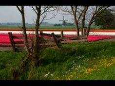Framing with a Frame : You Keep Shooting with Bryan Peterson: AdoramaTV