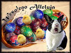 Wielkanoc: Animowane kartki wielkanocne z życzeniami Easter, Animation, Happy, Christmas, Navidad, Easter Activities, Weihnachten, Yule, Christmas Movies