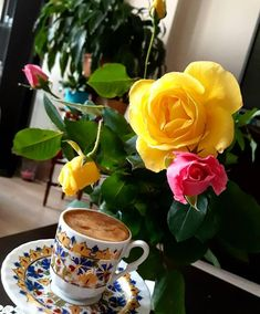 - [board_name] - Guten Morgen Coffee Vs Tea, Coffee Love, Coffee Cups, Tea Cups, Amazing Flowers, Beautiful Roses, Corps Parfait, Good Morning Coffee, Breakfast Tea