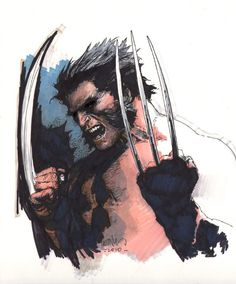 Wolverine by Leinil Francis Yu Wolverine Art, Logan Wolverine, Baby Wolverine, Comic Books Art, Comic Art, Wolverine Pictures, Hulk Art, Comic Character, Character Reference