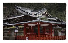 Nikko Monastery Building Gray/Red Area Rug