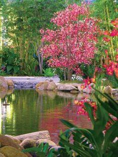 Imágenes de Jardines Orientales
