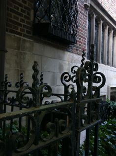 Wrought iron fence in NYC.