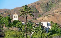 Upea Fuerteventura. Lomalla pääset tutustumaan saaren kauniiseen luontoon sekä historiaan ja kulttuuriin. wwwa.apollomatkat.fi #Fuerteventura Mansions, House Styles, Plants, History, Luxury Houses, Flora, Plant, Palaces, Mansion