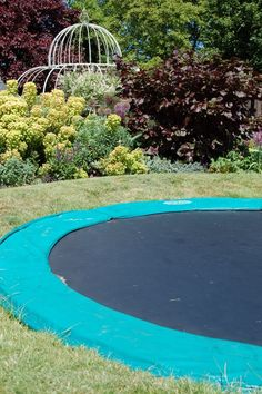In ground trampoline! Indie would LOVE this.