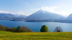 Der Thunersee und der Niesen - Schweiz Mountains, Nature, Travel, Leaves, Vacation Travel, Switzerland, Nice Asses, Naturaleza, Viajes