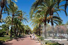 Walkers along the palm tree lined Croisette, Cannes, Cote d'Azur, France