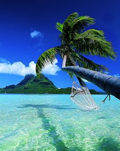 Bora Bora, French Polynesia My dream vacation ... want to stay in a hut over the water!