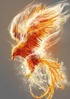 inspired by Mitology and fire phoenix zeichnung Phoenix Artwork, Phoenix Wallpaper, Phoenix Drawing, Phoenix Images, Phoenix Quotes, Phoenix Bird Tattoos, Phoenix Tattoo Design, Phoenix Design, Crow Tattoos