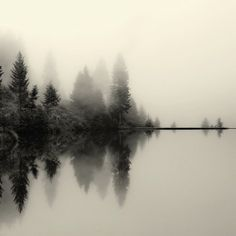 Fog over a lake by Dittekarina