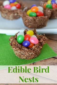Edible Bird Nests