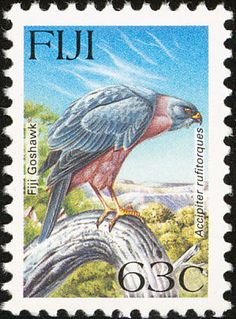 Fiji Goshawk stamps - mainly images - gallery format