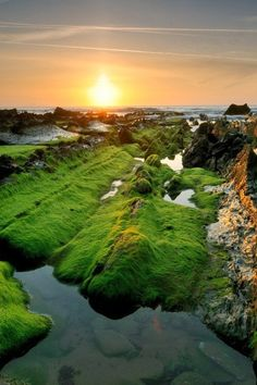 20 Stunning Pictures of Nature that will blow your mind   Incredible Pictures