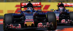The Flying Dutchman | Scuderia Toro Rosso