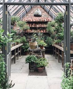 The 10 Best greenhouse ideas Outdoor Greenhouse, Best Greenhouse, Greenhouse Plans, Greenhouse Gardening, Outdoor Gardens, Greenhouse Wedding, Greenhouse Kitchen, Pallet Greenhouse, Homemade Greenhouse