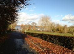 Shannon Lane Terryglass Nov 2012 Ireland, Country Roads, Irish