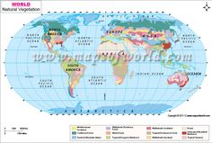 Destination mars map laminated national geographic store buy world natural vegetation map online from store mapsofworld available in ai eps jpg and pdf format gumiabroncs Choice Image