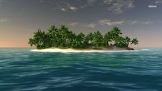 Palm tree filled small island
