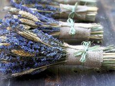 bouquets de lavande officinale et épis de blé décorés de toile de jute et raphia