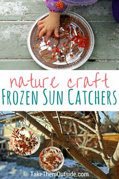 Wonderful Wintertime Frozen Sun Catcher Ice Ornaments ⋆ Take Them Outside Winter nature crafts: ice ornaments or sun catchers