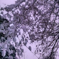 Ok! Who said snow! I swear it was not me this time. #Snow #Kansasweather #Meteorology #Snowtodaysuntomorrow #EsbonArtsStudio #EsbonKS  (at Esbon Arts Studio and living space.)