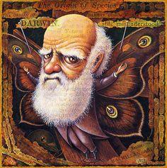Evolution art print, Specimen: Darwin 6x6, Charles Darwin with butterfly wings, Fantasy science geek gift , Oddity Curiosity Curious Art