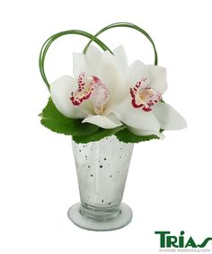 Cymbidium Simplicity - Crisp White Cymbidium Orchids, Steel Grass Leaves and our signature Trias Silver vase is the perfect gift!