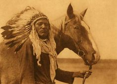 Native American Indian With Horse