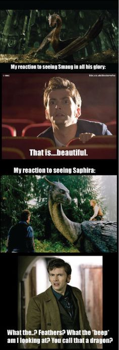 "The movie ""Eragon"" makes me sick. That was such a pathetic excuse for a dragon, and a great disservice to the lovely Saphira in the books. Thank you, Peter Jackson, from the bottom of my heart for making Smaug the most beautiful, amazing, terrifying dragon I have ever seen. Oh, and no small thanks to the great Benedict Cumberbatch for bringing Smaug to life."