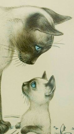 Irene Spencer Artist Signed, Limited Edition Lithograph, Print w/ Siamese Cats: Christmas Mourning I Love Cats, Crazy Cats, Cute Cats, Funny Cats, Amazing Drawings, Cool Drawings, Siamese Cats, Cats And Kittens, Cat Drawing
