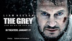 The Grey movie reviews & Metacritic score: In The Grey, Liam Neeson leads an men vs wolves, and the wolves definitely have the home-court advantage.
