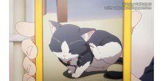 Musaigen no Phantom World ep7 - Rudolph >> #AnimeCat #Kitten #NamedCat #PawPads Musaigen no Phantom World Myriad Colors Phantom World 無彩限のファントムワールド