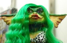 Chalker/stalker mom got her hair 'done' green with envy for Terri.  We'll see if her gremlin followers will do it too.