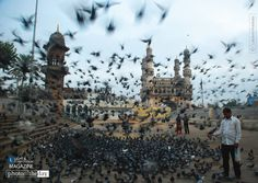 It was a dim lit winter morning when we visited Charminar (seen in the background) which is usually surrounded by pigeons as many visitors feed these pigeons. Slow Shutter Speed, In A Heartbeat, Paris Skyline, Calm, In This Moment, Winter, Hyderabad, Painting, Travel