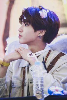 Kpop idol as your [Male&Female] Rapper, Fanfiction, Baby Squirrel, Shared Folder, Wattpad, Latest Albums, Kids Wallpaper, Ji Sung, Lee Know