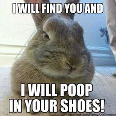 Poop+in+your+shoes.jpg (960×960)