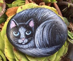 Painted Black and White Cat Painting on a Beach Rock - Christmas CreatedCanvases  | eBay