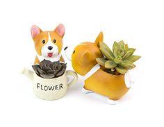Lovely Corgi Dog Shaped Plant Decor Succulent Plants Deco... https://www.amazon.com/dp/B01L8BYRK8/ref=cm_sw_r_pi_awdb_x_i5wpzbAMANJJG
