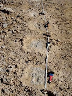 The oldest human footprints in North America have been dated for the first time and could help scientists to understand what Mexico's climate was like 7000 years ago....