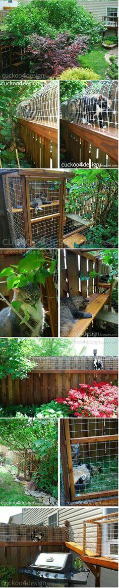 27 Gambar Rumah Kucing terbaik | Rumah kucing, Kucing ...