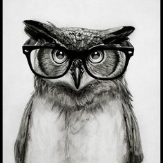 Mr. Owl Art Print