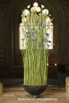Akademie für Naturgestaltung Altar Flowers, Indoor Plants, Floral Design, Artist, Beijing, Inspiration, Green, Sodas, Nature