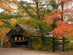 I want to live where I have to travel and see these bridges everywhere!! A beautiful step back in time <3