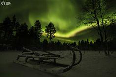 Lucky Sled: Photo by Jan-Erik Paadar.