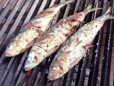 銚子の入梅いわし(真いわし)の炭火焼 大きく、脂がのった旬のいわしは絶品。