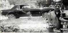 Mustang Vintage Shot