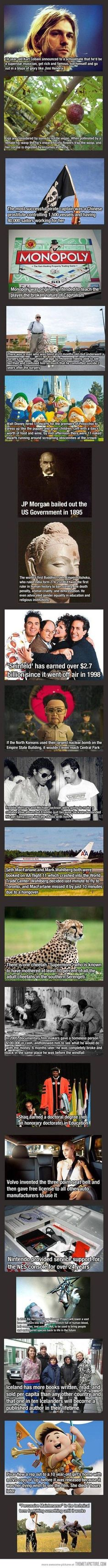 Funny pictures about 21 Interesting General Knowledge Facts. Oh, and cool pics about 21 Interesting General Knowledge Facts. Also, 21 Interesting General Knowledge Facts. Useless Knowledge, General Knowledge Facts, Knowledge Is Power, Need To Know, Did You Know, Wtf Fun Facts, Random Facts, Strange Facts, Random Trivia