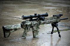 .308 AR with a Joint Force Enterprises paintjob.