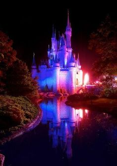 great pics: Disney's World Magic Kingdom, Orlando